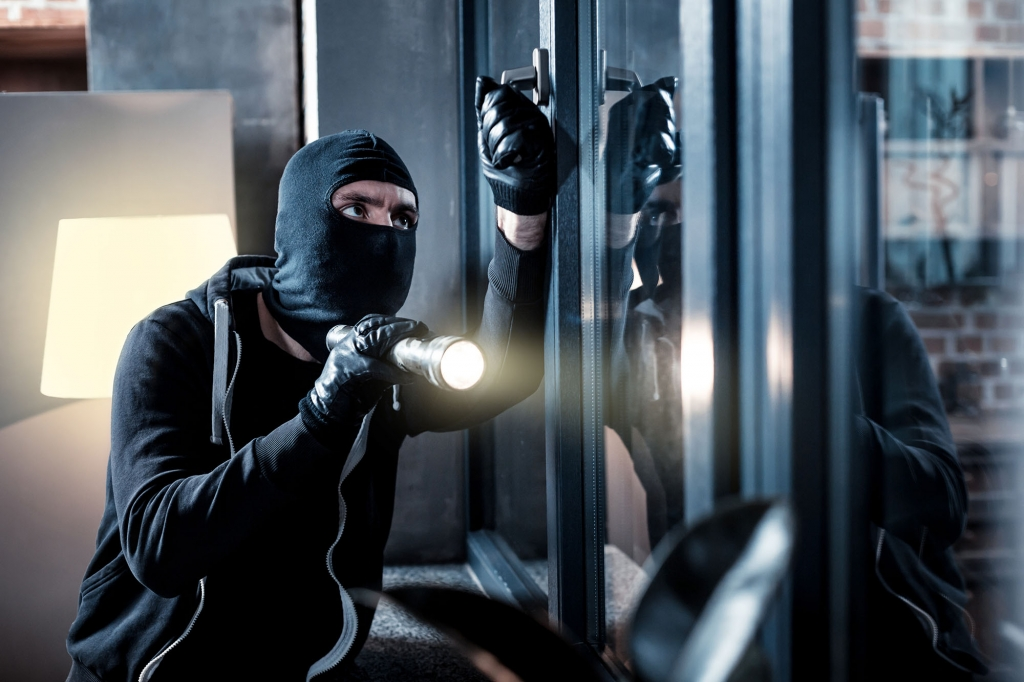 difference between theft and burglary